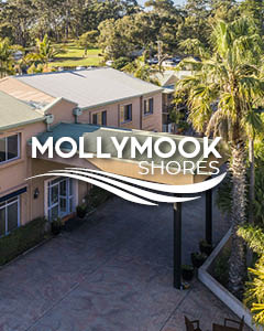 mollymood shores motel
